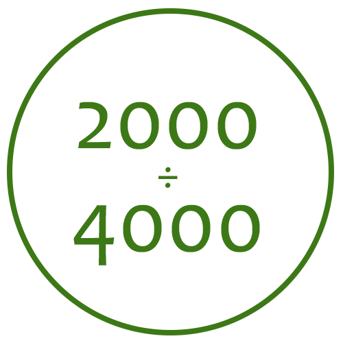 2000-4000mm